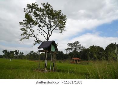 Elephant watch hut, Sri Lanka