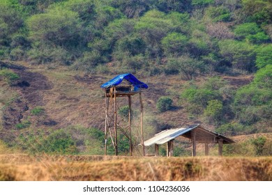 Elephant watch tower Build In Top Of Trees And Open Grounds At Coimbatore Rural Areas Tamil Nadu, India
