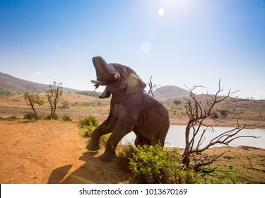 Elephant in the wild [South Africa]
