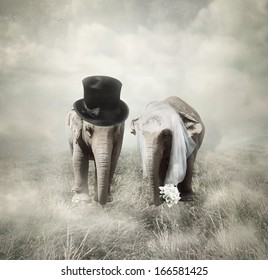 Elephants that who are getting married in twenties style