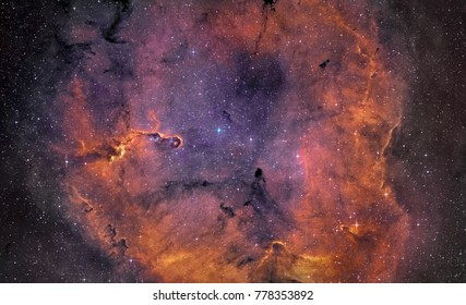 The Elephant's Trunk nebula (IC 1396), a concentration of interstellar gas and dust  in the constellation Cepheus about 2,400 light years away