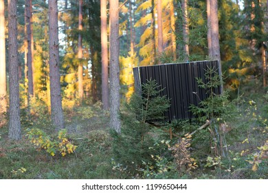 An elevated hunting tree stand in the Scandinavian forest at sunset