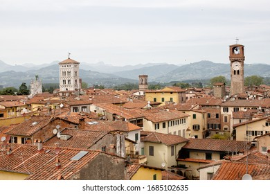 Elevated view over terracotta tiled rooftops of the ancient walled city of Lucca in the Tuscany region of Italy