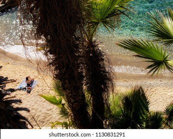 elevated view of woman sitting on beach with clear water and palm tree