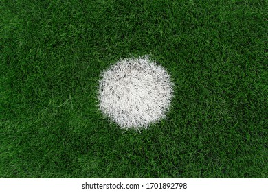 eleven-meter point in pinalty.white mark for the ball on the football field