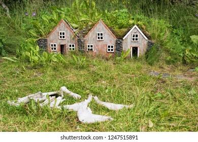 Elf houses in iceland