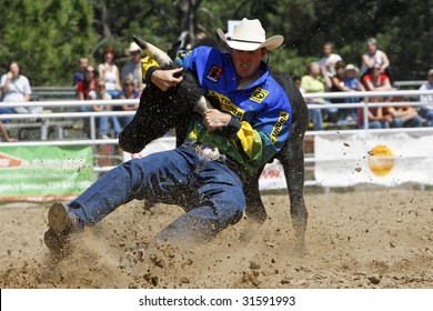 ELIZABETH, COLORADO - JUNE 6: PRCA cowboy Josh Peek earns the best time in Saturday afternoon Steer Wrestling action at the Elizabeth Stampede Rodeo on June 06, 2009 in Elizabeth, CO.
