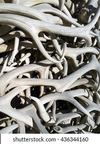 Elk antlers piled up to form an arch in the town square of Jackson, Wyoming.