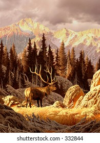 Elk Bull in the Rocky Mountains / AF-021