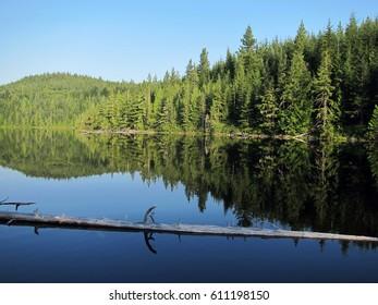 Elk Lake - beautiful place in British Columbia, Canada