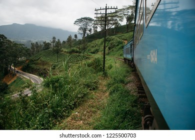 ella, sri lanka, tea plants, train