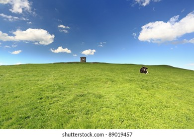 Elliston tower and lone Cow laying on a grassy green field on a sunny day.