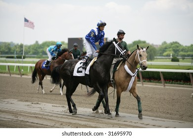ELMONT - JUNE 6: Rock in Bage with Allen Garcia aboard in the post parade for the Fifth race at Belmont Park on Belmont Stakes Day - June 6, 2009 in Elmont, NY.