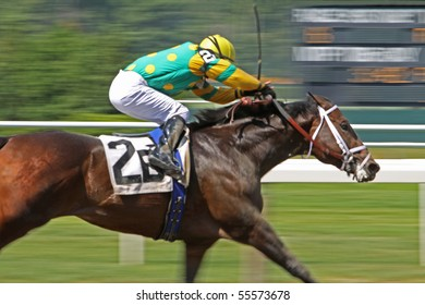 ELMONT, NY - JUN 19: David Cohen pilots Aikenite to victory in an allowance race at Belmont Park on Jun 19, 2010 in Elmont, NY.