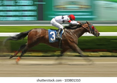 "ELMONT, NY - MAY 28: Jockey David Cohen and ""Eltheeb"" win a claiming race at Belmont Park on May 28, 2012 in Elmont, NY."