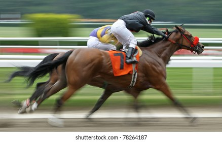 ELMONT, NY - MAY 29: Female jockey Maylan Studart competes in a claiming race aboard Karakorum Jete at Belmont Park on May 29, 2011 in Elmont, NY.