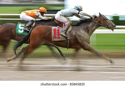 """ELMONT, NY - OCT 1: """"Yesterday's Story"""" and jockey Ryan Curatolo (#11) compete in a claiming race over a muddy track at Belmont Park on Oct 1, 2011 in Elmont, NY."""