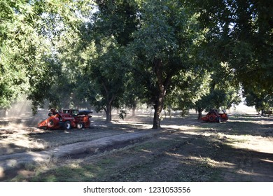 Eloy, AZ., U.S.A. Oct. 26, 2018. Daybreak Pecan Co. Flory F1 heavy duty sweeper for pecan harvest.