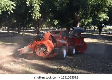 Eloy, AZ., U.S.A. Oct. 26, 2018. Daybreak Pecan Co. Flory F1 heavy duty sweeper for pecan harvest.