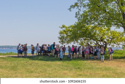 ELSINORE, DENMARK - MAY 14, 2018: Teachers with their school classes take a break in the shadow below a tree at the beach of Oresund .