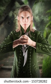 Elvish warrior and protector of the forest.