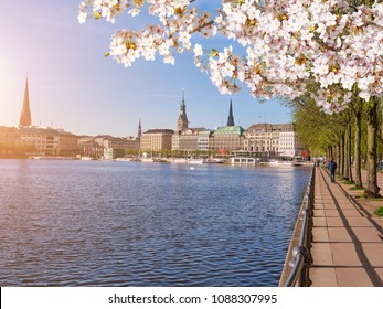 Embankment along the lake Lake, center of Hamburg in springtime