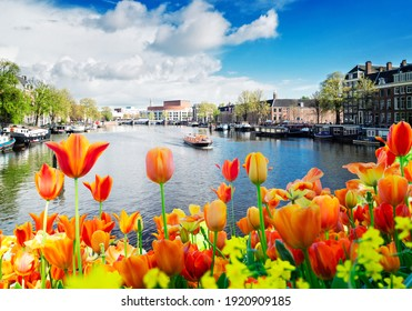 embankments of Amstel canal with traditional houses in Amsterdam, Netherlands with flowers