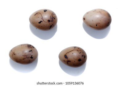 Emberiza schoeniclus. The eggs of the Reed Bunting in front of white background, isolated. the Ryazan region (Ryazanskaya oblast), the Pronsky District.