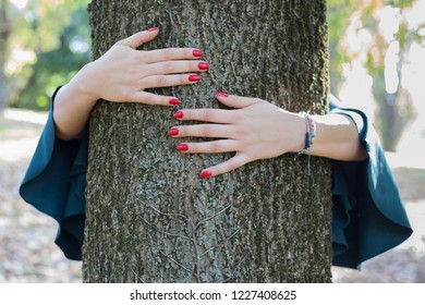 embracing tree. close up of young female hands hugging a huge tree in a park. concept of connecting with nature