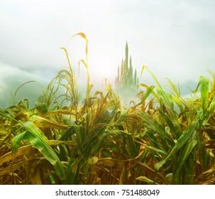 emerald city from cornfield
