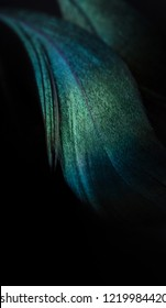 Emerald feathers of an exotic bird on a black background.  Blue-green  peacock feather close up. Bright colorful plumage of a tropical bird. Colorful feathers for masquerade or carnival.