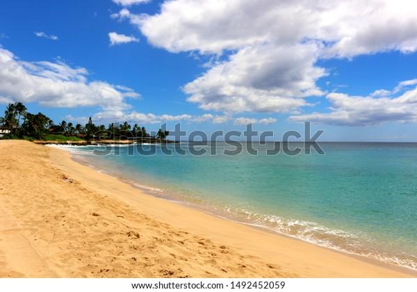 emerald green beach in Hawaii