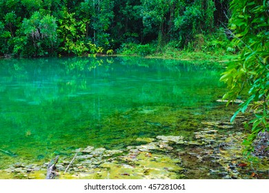 Emerald Pool famous unseen nature travel place in Krabi, Thailand