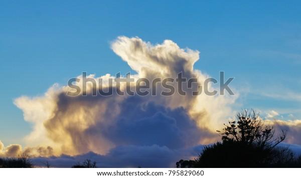 an emerging rabbit cloud..