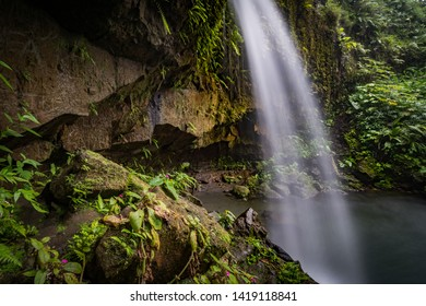 Emerlad Pool and Waterfall Views around the caribbean island of Dominica West indies