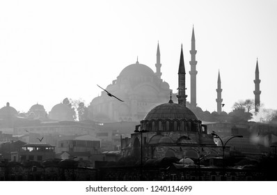 Eminonu,  Istanbul/ Turkey - 02 07 2014: Scenic view of Blue Mosque(Sultanahmet Cami) with behind the New Mosque(Yeni Cami).
