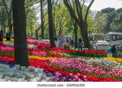 EMIRGAN PARK, ISTANBUL, TURKEY-APRIL 27, 2017 : Unidentified tourist enjoy blooming tulips during 2017 Istanbul Tulips Festival.