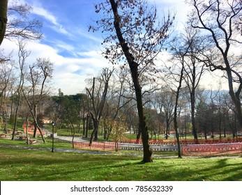The Emirgan Park (Turkish: Emirgan Korusu or rarely Emirgan Parki) in the Sariyer district of Istanbul,