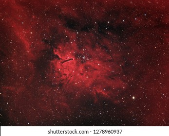 Emission nebula Sh2-86 and star open cluster NGC 6823 in the constellation Vulpecula