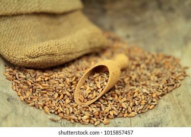 emmer cereals on wood