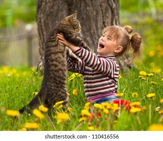 Emotional little girl playing with a cat in the park.