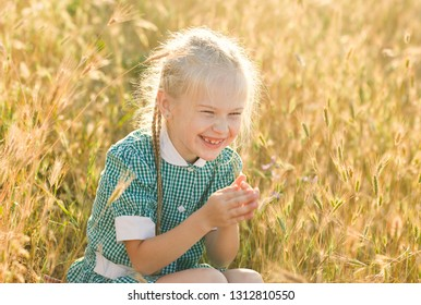 Emotional portrait of a happy and funny little blonde girl with pigtails, laughing with folded hands together sitting in a field of wheat lit by the rays of the setting sun. Summertime. Childhood