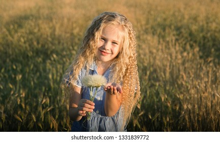 Emotional portrait of a happy and funny little girl with curly blond hair looking with a smile at the camera while sitting in a wheat field and lit by the rays of the setting sun. Summer. Childhood