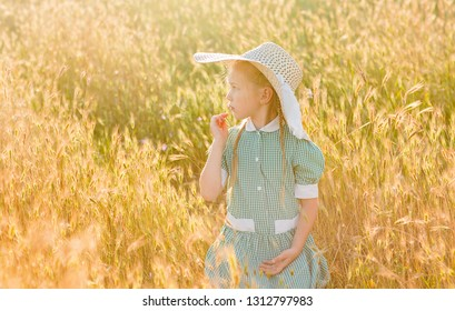 Emotional portrait of a passionate and interested little beautiful blonde girl with pigtails and a hat, looking at the hares sitting in a field of wheat lit by the rays of the setting sun. Summertime