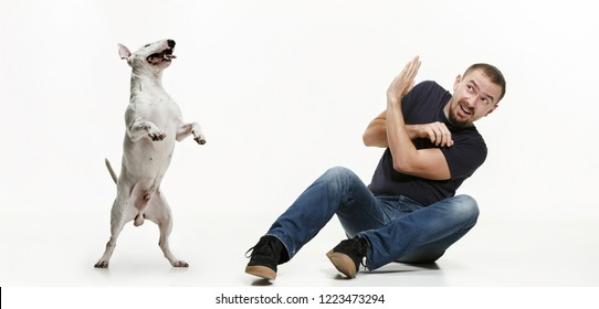 Emotional Portrait of scared man and his dog, concept of friendship and care of man and animal. Bull Terrier type Dog on white studio background