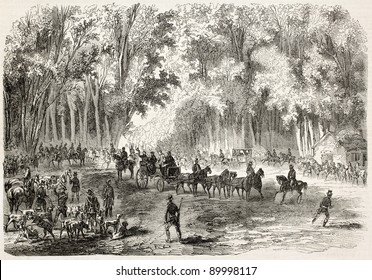 Emperor Napoleon III hunting near Compiegne. Created by Gaildrau after Mercier, published on L'Illustration, Journal Universel, Paris, 1858