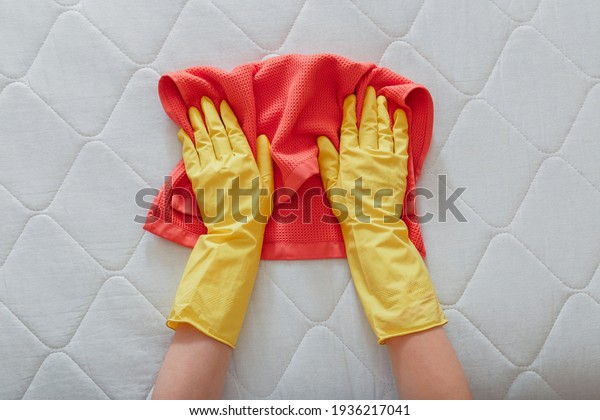 Employee cleans surface of mattress on bed with rag. Cleaning disinfection surfaces. Cleaning company person Hands in rubber gloves do Mattress chemical cleaning