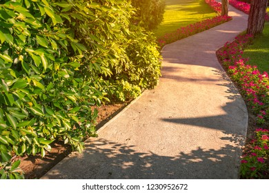 Emplty curved asphalt park alley at sunset or sunrise. Flowers and trees on sides of road.