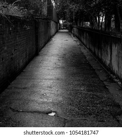 Empty alley after rain