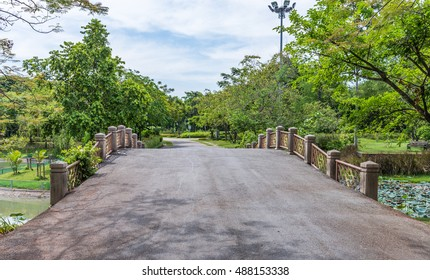 Empty asphalt way to the old bridge in the  city park.
